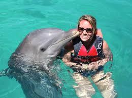 Bahamas Dolphin Swim
