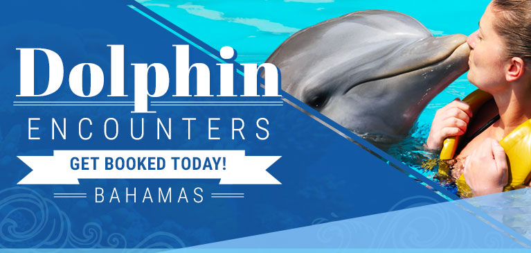 get_book_with_dolphin_encounters